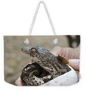 Crocodile And Alligator Breeding Farm  Weekender Tote Bag