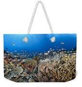Crystal Bay Panorama Weekender Tote Bag