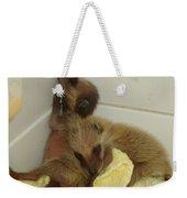 Cuddle Bears Weekender Tote Bag