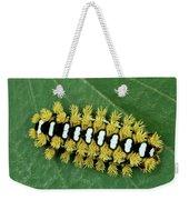 Cup Moth Limacodidae Caterpillar On Leaf Weekender Tote Bag