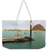 Curious About Sea Lions Weekender Tote Bag