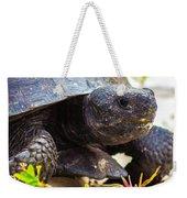 Curious Turtle Weekender Tote Bag