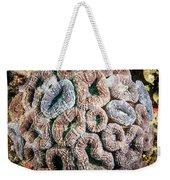 Curler Coral Weekender Tote Bag