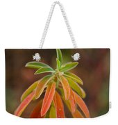 Cushion Spurge Weekender Tote Bag