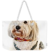 Cute Dog In Halloween Cowboy Costume Weekender Tote Bag by Elena Elisseeva