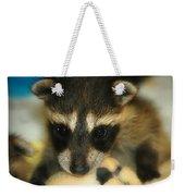 Cute Face Behind The Mask Baby Raccoon Weekender Tote Bag