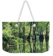 Cypress Trees Cross A Waterway Weekender Tote Bag