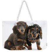 Dachshund Puppies Weekender Tote Bag