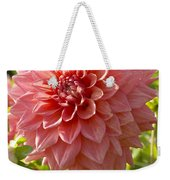 Dahlia Dahlia Sp Beverly Fly Variety Weekender Tote Bag