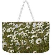 Daisy Fields Forever - Alabama Wildflowers Weekender Tote Bag