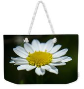 Daisy On Green Weekender Tote Bag