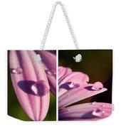 Daisy Rain  Weekender Tote Bag