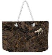 Dall Sheep Were Is Very Adapt Weekender Tote Bag