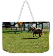 Dancing Pony Weekender Tote Bag