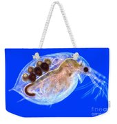Daphnia With Eggs Weekender Tote Bag