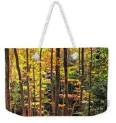 Dappled Sun On Fall Colors Weekender Tote Bag