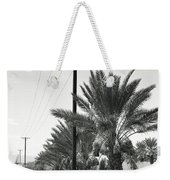 Date Palms On A Country Road Weekender Tote Bag