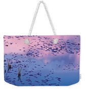 Dawn Sky Reflected In Pool Weekender Tote Bag