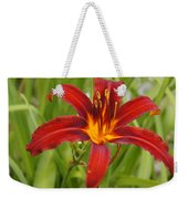 Day Lilly In Diffused Daylight Weekender Tote Bag