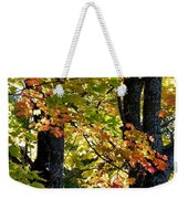 Dazzling Days Of Autumn Weekender Tote Bag