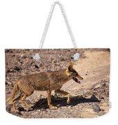 Death Valley Coyote Weekender Tote Bag