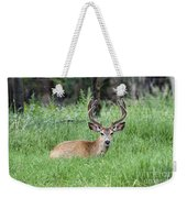 Deer At Rest Weekender Tote Bag