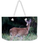 Deer - Doe - I Heard Something Weekender Tote Bag