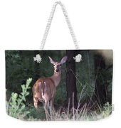 Deer - Doe - Nearing The Edge Weekender Tote Bag
