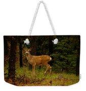 Deer Gazing  Weekender Tote Bag