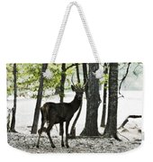 Deer In The Woods Weekender Tote Bag
