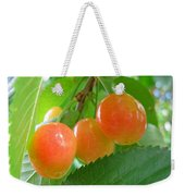 Delicious Plums On The Branch Weekender Tote Bag