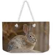 Desert Cottontail Rabbits Weekender Tote Bag