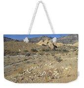 Desert Washout Weekender Tote Bag