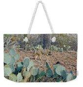 Desert Wolf Weekender Tote Bag