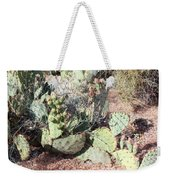 Desert's Collection Of Dried Flowers 3 Weekender Tote Bag