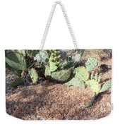 Desert's Collection Of Dried Flowers1 Weekender Tote Bag