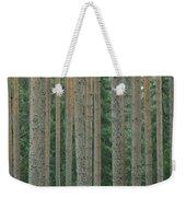 Detail Of Arrow-straight Evergreen Weekender Tote Bag