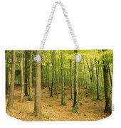 Devils Glen Woods, County Wicklow Weekender Tote Bag