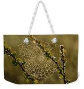 Dew Highlights An Orb-weaver Spiders Weekender Tote Bag