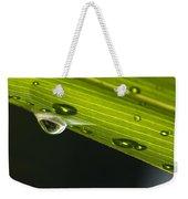 Dew On Leaf, Germany Weekender Tote Bag