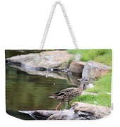 Diary Of A Mad Brown Duck Weekender Tote Bag