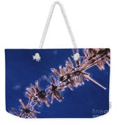 Diatoms Attached To Alga, Lm Weekender Tote Bag by Eric V. Grave