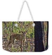 Dingo In The Wild V3 Weekender Tote Bag