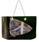 Dirce Beauty Weekender Tote Bag