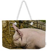 Dirty Piggy Weekender Tote Bag
