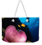 Diver And Magnificent Anemone, Fiji Weekender Tote Bag