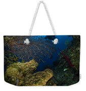 Diver Swims Over A Reef, Belize Weekender Tote Bag