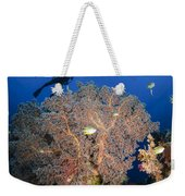 Diver Swims Over Sea Fans, Indonesia Weekender Tote Bag
