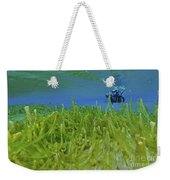 Diver With Fluorescent Green Algae Weekender Tote Bag