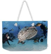 Divers Photographing A Giant Grouper Weekender Tote Bag